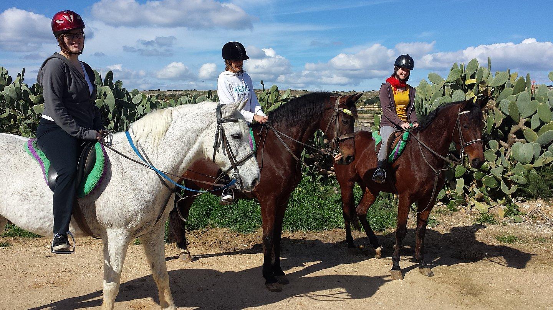 horseriding4.jpg