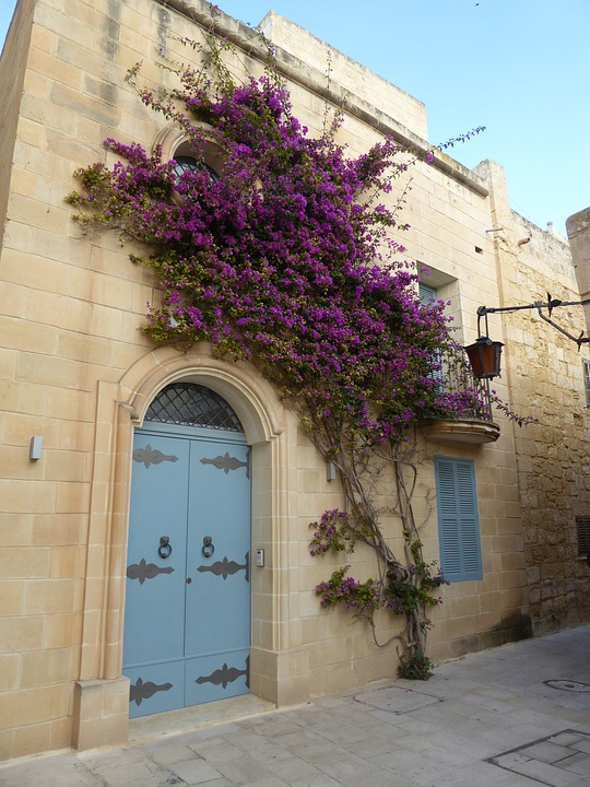 malta-2668329_960_720.jpg