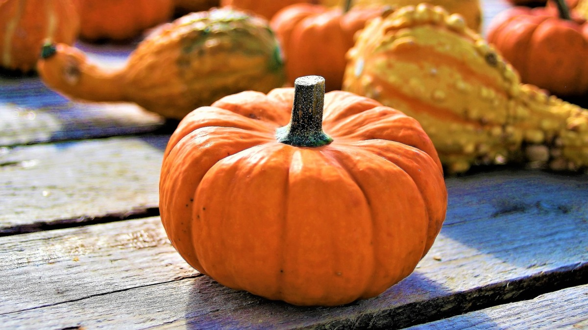 5 ways to celebrate Halloween in Malta